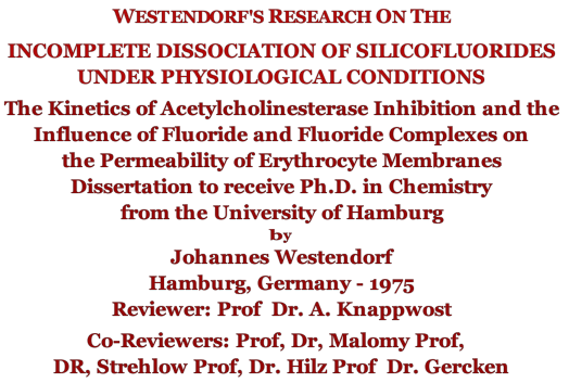 WestendorfsResearch-incomplete-diss.