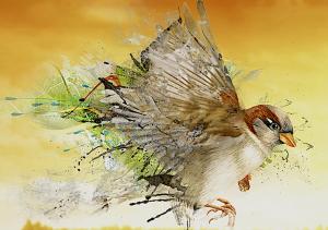 stylized-sparrow