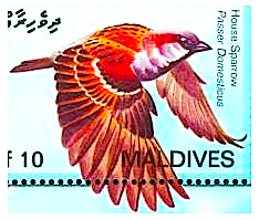 stamp-sparrow