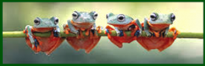 4-frogs-on-a-stick-f