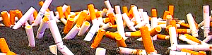 cigarette-butts1