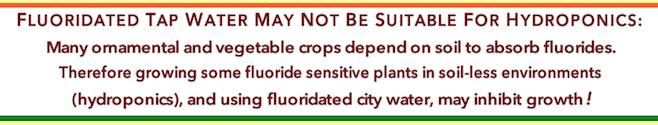 f-tap-water-hydroponics-f