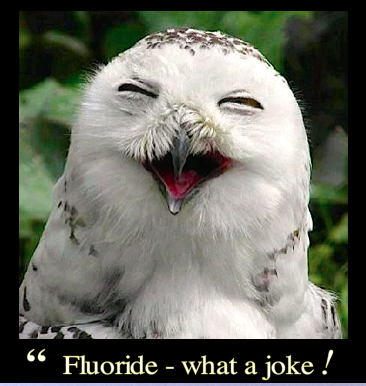 fluoride-what-a-joke-f