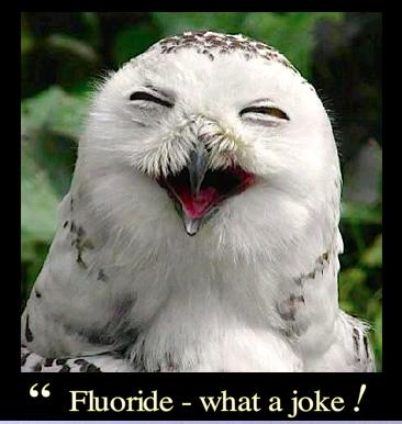 fluoride-what-a-joke-f
