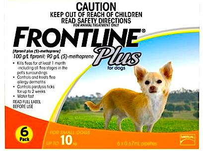 Frontline image
