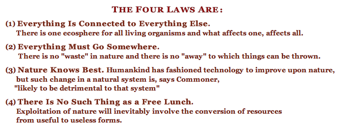 The-Four-Laws