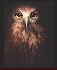 dark-owl-f