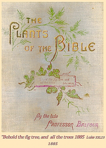 front-cover-plants-of-the-bible