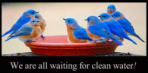 we-are-all-waiting-for-clean-water