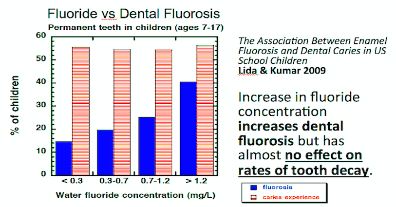f-v-dental-f-graph