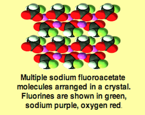 1080-molecules