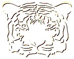 paper-tiger-b