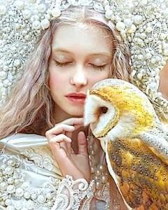 lady-owl