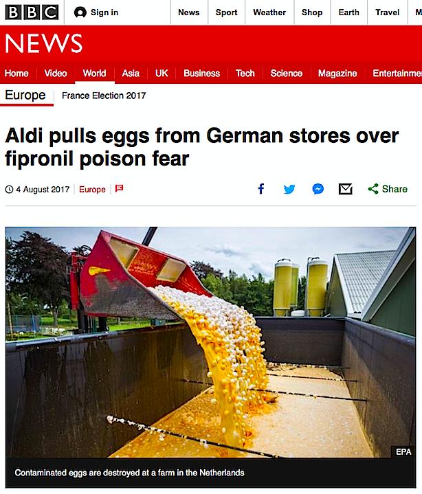 aldi-eggs-fipronil
