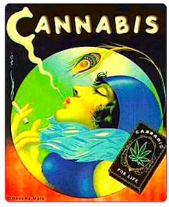 cannabis-add