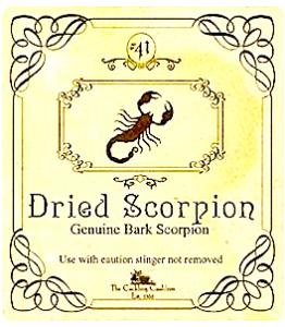 dried-scorpion