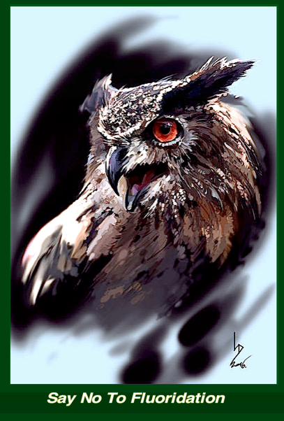 owl-say-no-to-fluoridation-f