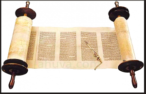 image-of-torah
