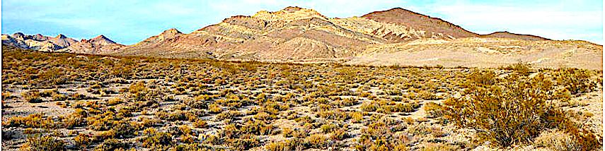 nevada-desert-m